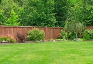 Fence Cleaning Service in Friendswood
