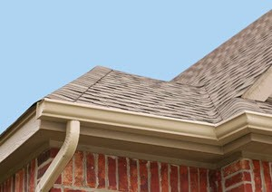 Gutter Cleaning Service in Rosharon TX