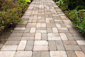 Path Cleaning Pro in Seabrook